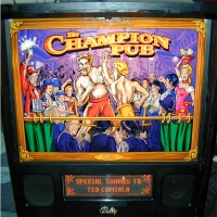 FLIPPER BALLY CHAMPION PUB