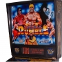FLIPPER  DATA EAST ROYAL RUMBLE WWF