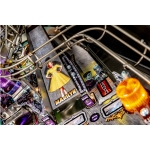 THE-MUNSTERS-PRO-PINBALL-STERN-DETAILS-RAMPE.jpg